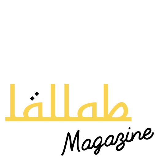 Lallab association Lyon